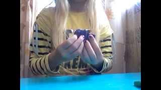 Урок лепки из пластилина: 2 виноград