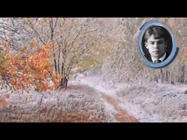 Изображение предпросмотра прочтения – Людмила ПетровнаФорманюк читает произведение «Я по первому снегу бреду» С.А.Есенина
