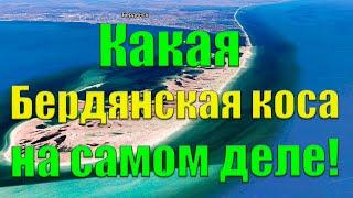 Бердянская коса 2018: пляжи, жилье на азовском море, дорога