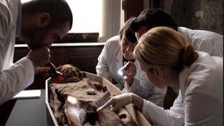 Тайна коптских мумий. Документальный фильм