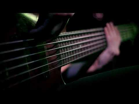 NIHILITY -  Organic Fallacies Official Bass  Play-through