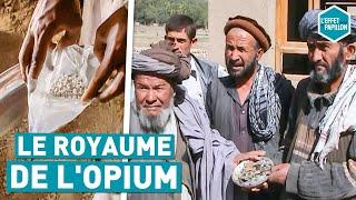 LE ROYAUME DE L'OPIUM (Afghanistan) - L'Effet Papillon