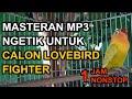 jam Pancingan Ngetik Agar Ngekek Panjang Gacor Calon Lovebird Fighter Masteran  Mp3 - Mp4 Download