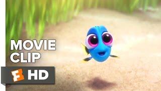 Finding Dory Movie CLIP - Baby Dory (2016) - Ellen DeGeneres, Ed O'Neill Movie HD