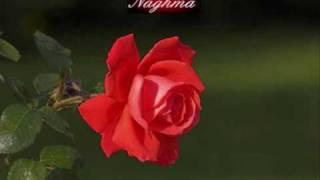 Naghma - Janan Ba Raze