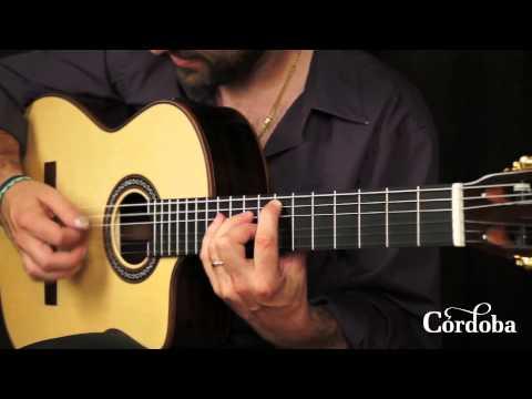 Cordoba Guitars - GK Pro Negra