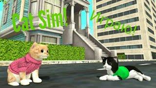 Игра про Котов Воителей!(Cats Sim)
