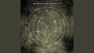 Lotus (Tibi Dabo Remix)