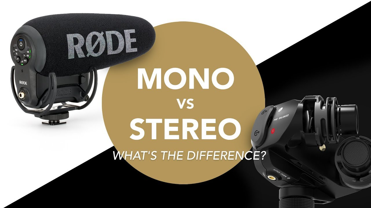 Audio For Film 101: Mono vs  Stereo - Which VideoMic Do I Need?