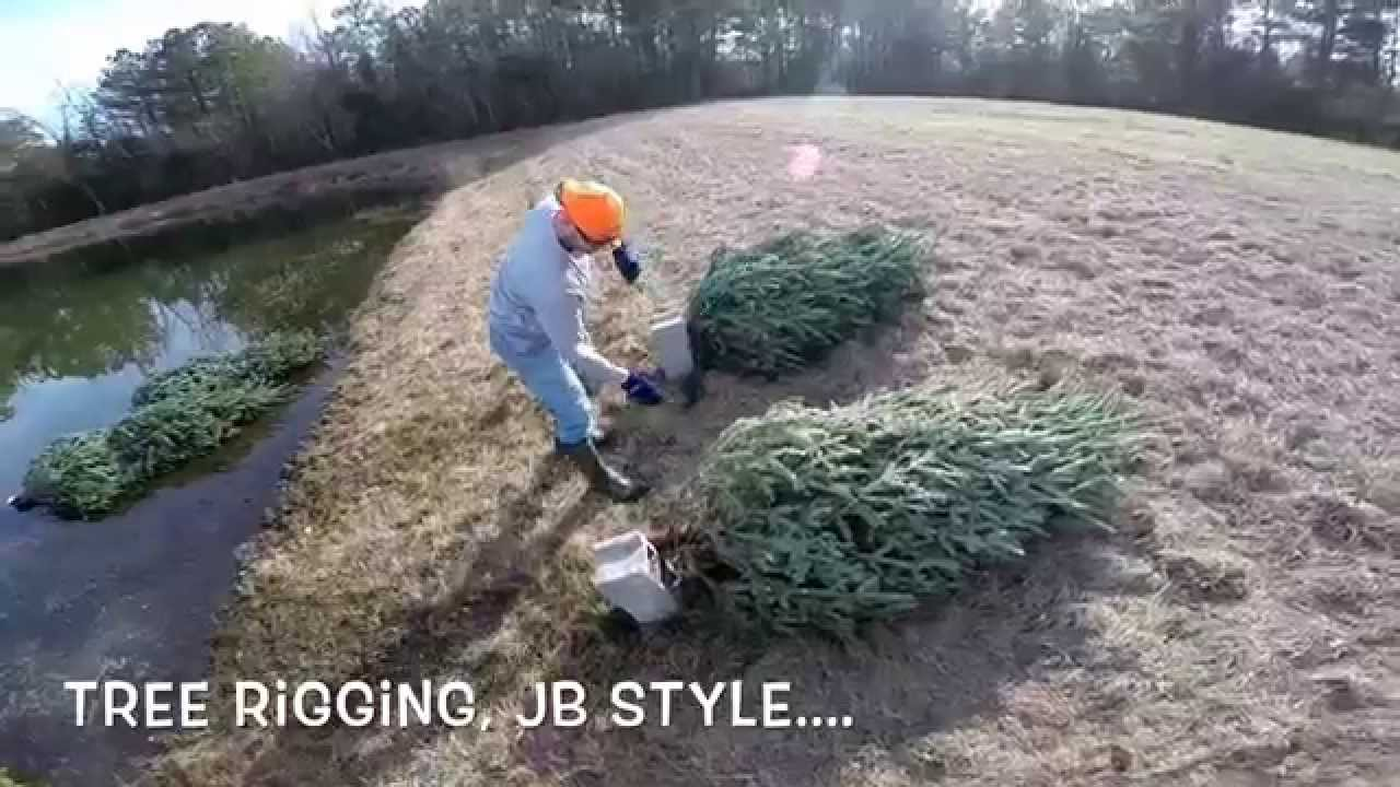 Easiest Christmas Tree
