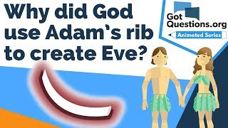 Why did God use Adam's rib to create Eve?