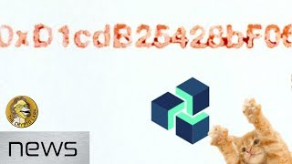 Bitcoin & Cryptocurrency News - Zencash Attack Update, Blood on the Blockchain, & Github Sold