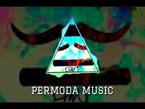 music zed k dmt