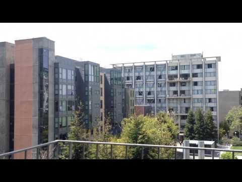 UC Berkeley Dorm Tour    Unit 1 Freeborn