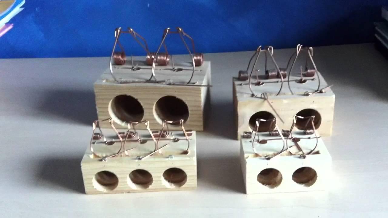 Cepos de madera para ratas ratones y todo tipo de - Cepos para ratas ...