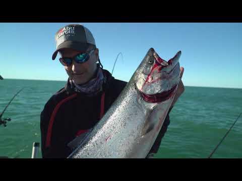 Salmon Fishing in