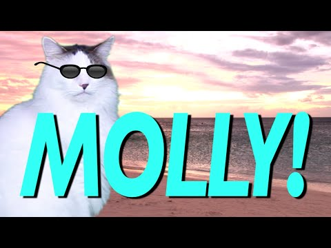 What Is Molly Cake