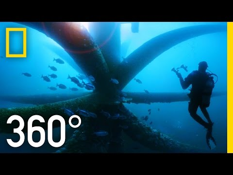 360° Dive Through an Oil Rig Ecosystem | National Geographic