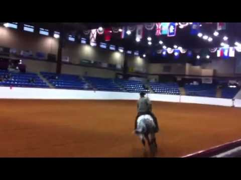 2012 TK Smokey Bar Cow Horse