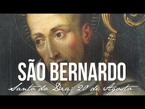 Resultado de imagem para DIA DE SÃO BERNARDO