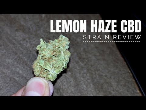 Lemon Haze CBD Strain Review