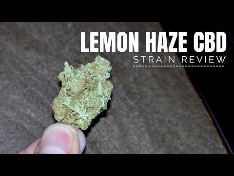 Lemon Haze CBD Strain Review