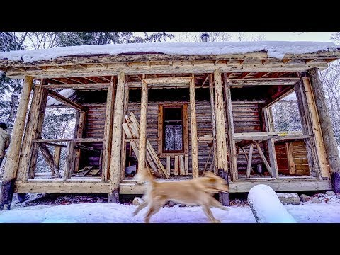 """Cali at the Cabin 