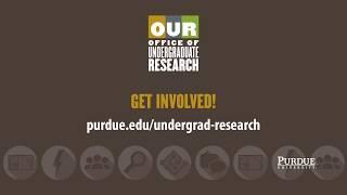 Describe Purdue undergraduate researcher