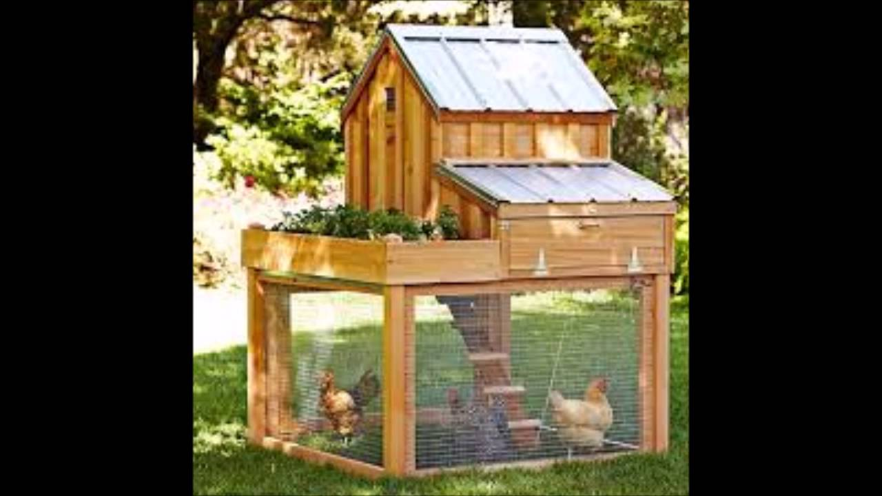 Poultry house designs pdf how to build a quick and easy for How to build a house cheap and fast