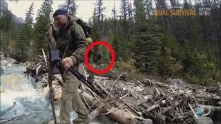 Bigfoot Seen On Survivorman 2015