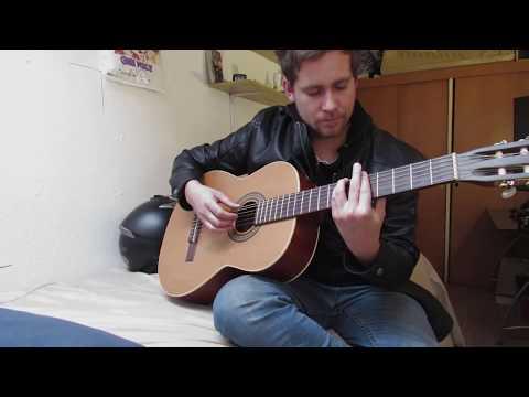 Cactus cover – Gustavo Cerati