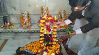Online Rudra Abhishek Puja at Haridwar  - Organised By Himalaya Vedic World