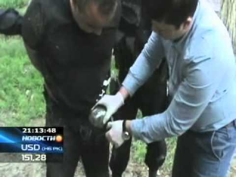 КТК  В руки полиции Шоколад -- криминальный авторитет