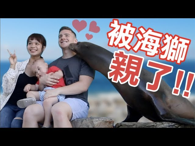 我被海獅親了!花蓮海洋館 / Taiwan Hualien Seaworld (4K) - Life in Taiwan #177