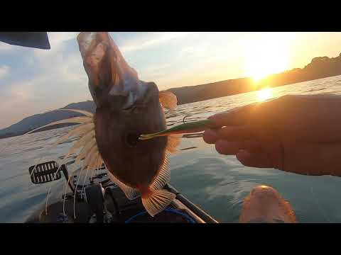 Kayak Fishing - Golden Bay, New Zealand - Big John Dory, Blue Cod And Snapper