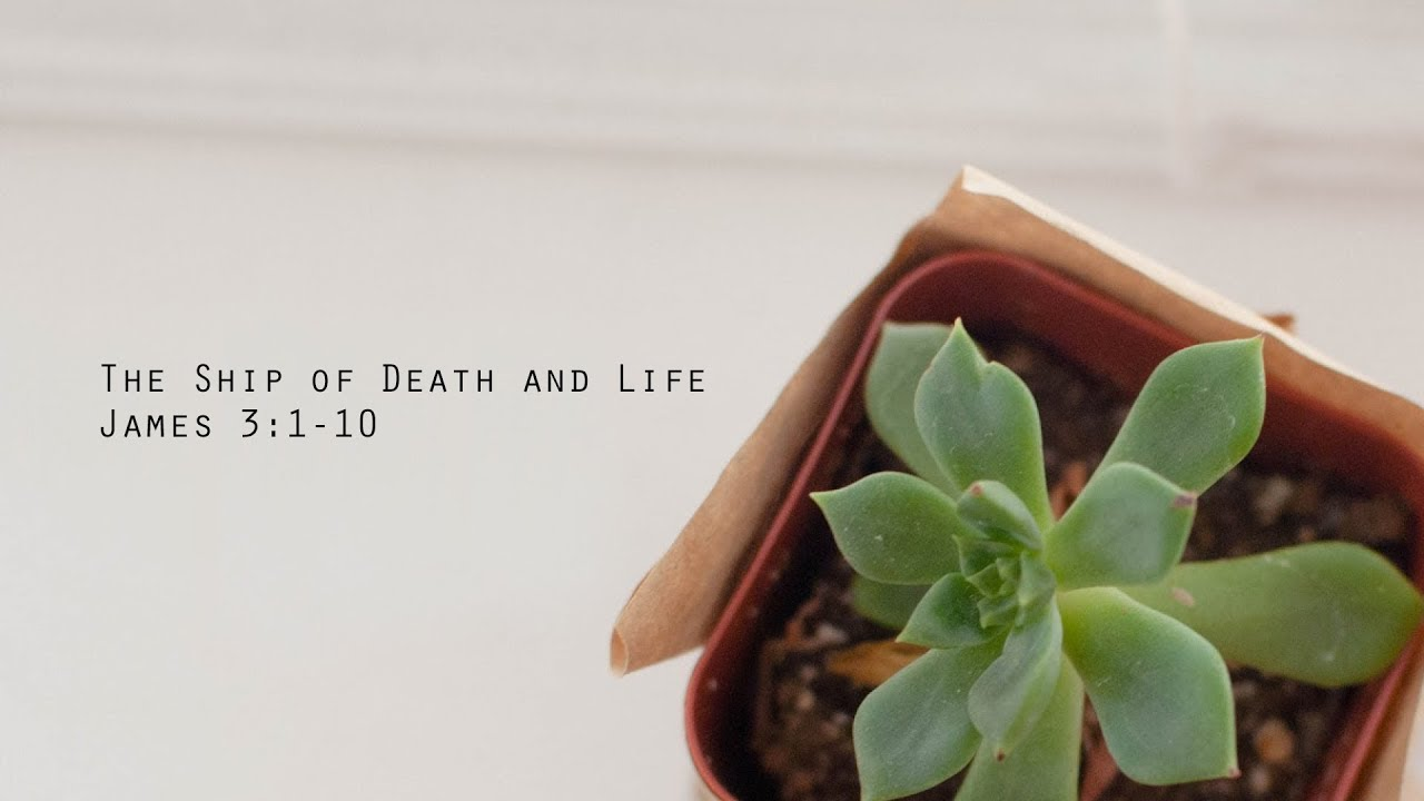 Revive // The Ship Of Death and Life