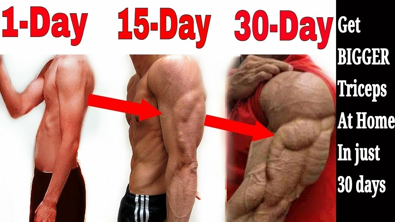 Complete Triceps Workout Get Huge Triceps In 30 Days Sore In 10