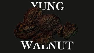 yung walnut - depresso mode