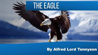 The Eagle by Alfred Lord Tennyson  2020 Discussion