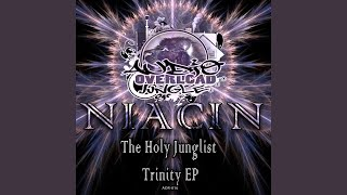 Provided to YouTube by Cygnus Music Ltd Overdose · Niacin The Holy ...