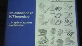 Macro Evolution in the Deep Sea pt .5 of 7