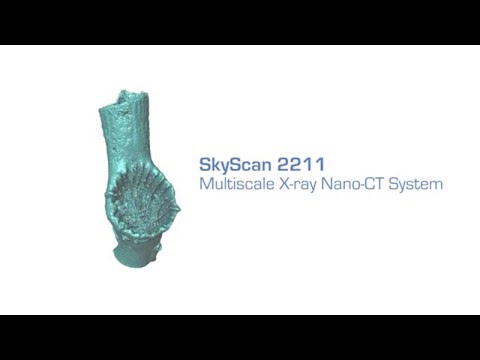 SkyScan 2211 - Multiscale X-ray Nano-CT System