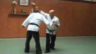 Grand Master martial arts Sensei Julio Toribio Kancho of Seibukan Jujutsu