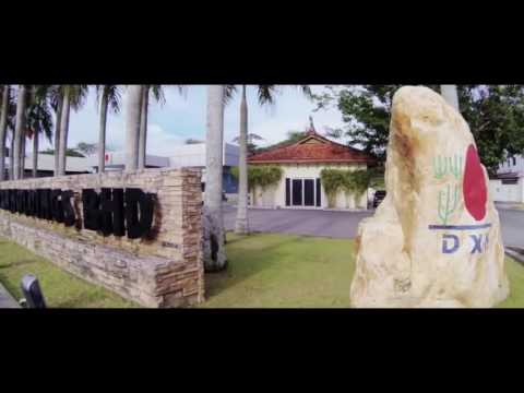 DXN story of the largest Ganoderma company
