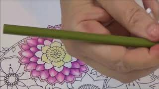 HOW TO COLOR FLOWERS AND BUTTERFLIES