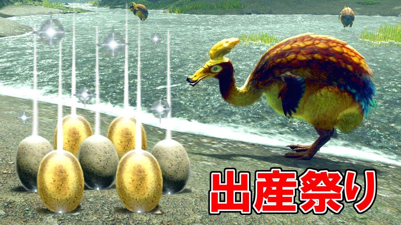 【MHRise】ガーグァは何個まで卵を産むことができるのか?(検証動画)