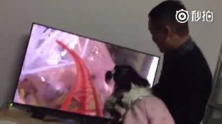 The best dad ever! Watch dad's DIY virtual-reality roller coaster ride to thrill his kid