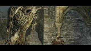 Dark Souls 2 unendlich Seelen / unendlich glitzerndes Titanit