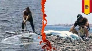 スペインのグラン・カナリア島で2015年7月20日、スキューバダイビング中...