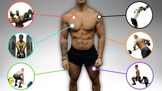 """The Best Science-Based Fขll Body Workout for Size and Strength (""""Workout B"""")"""